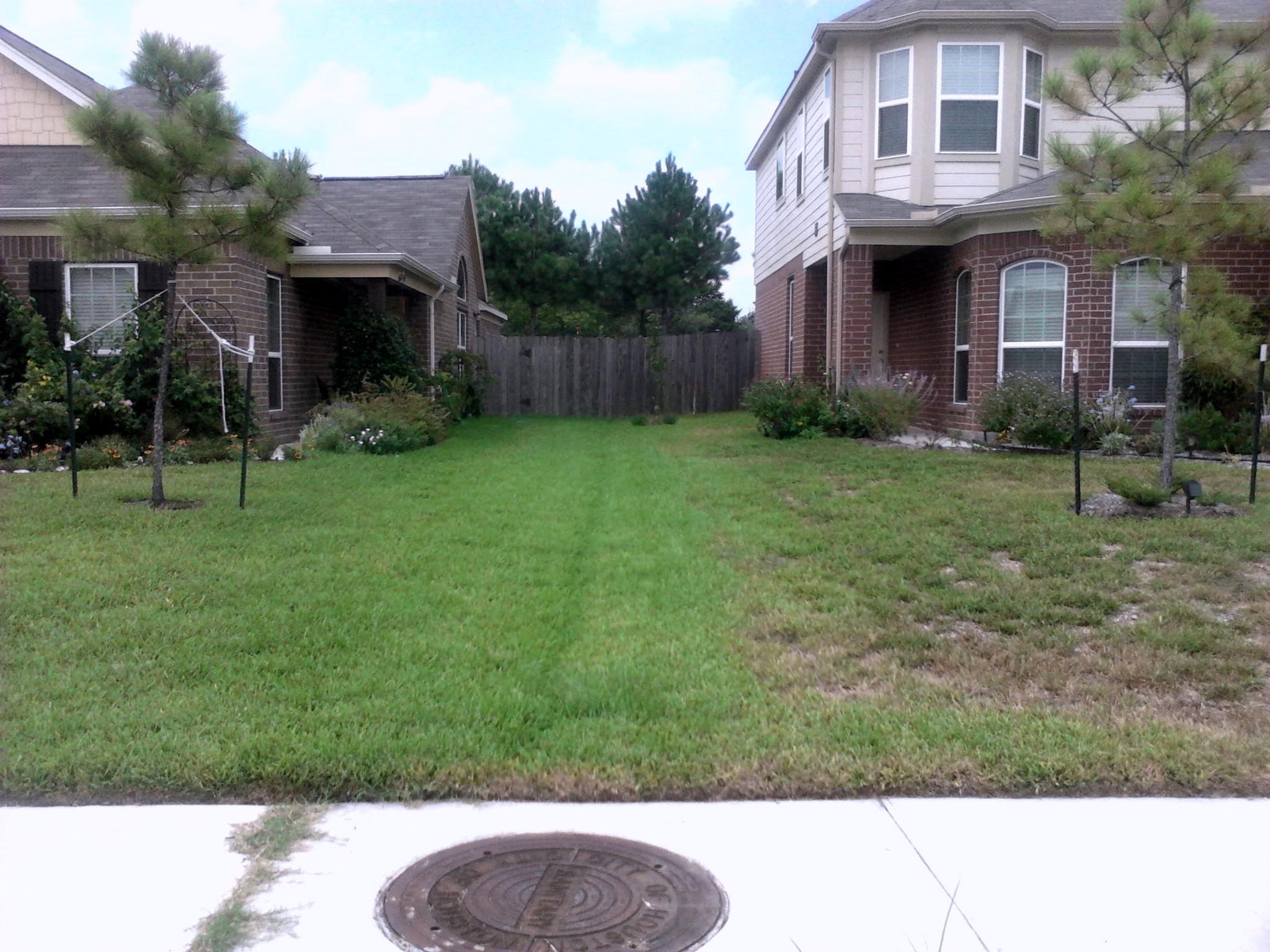Texas Lawn Care Katy Tx Tpolk