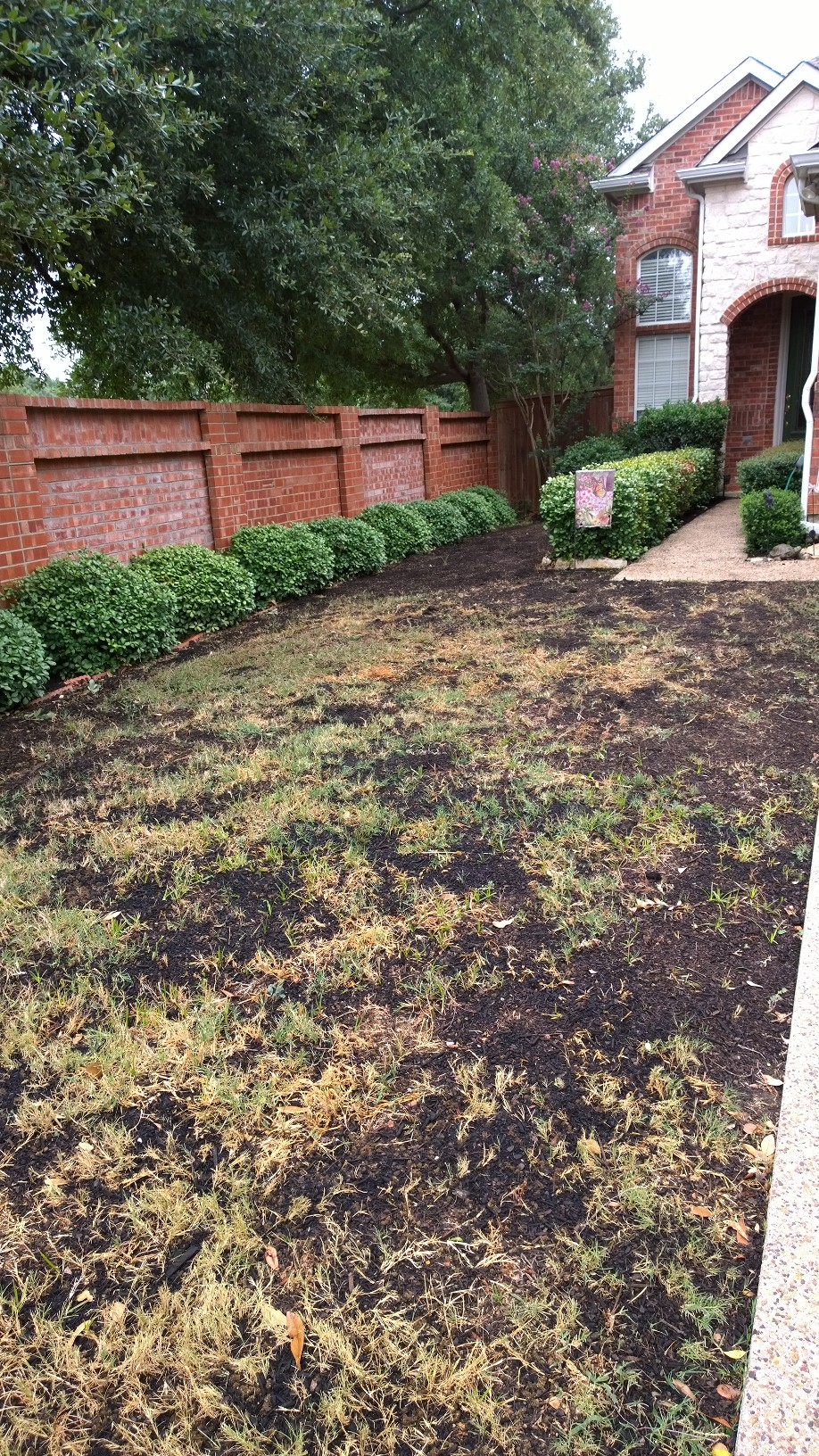 John I Have A Friend In Irving Texas Who Wants To Start Using Organics On Her Yard Some Of Your Compost Was Brought Up From Houston Try It
